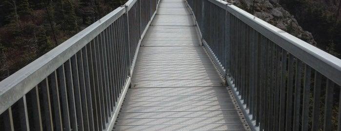 Mile High Swinging Bridge is one of Lieux qui ont plu à T.