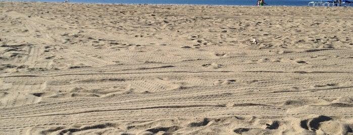 Yoga On The Beach is one of Denise 님이 좋아한 장소.