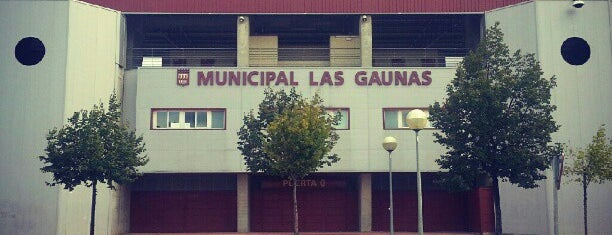 Municipal Las Gaunas is one of Locais salvos de Ana.