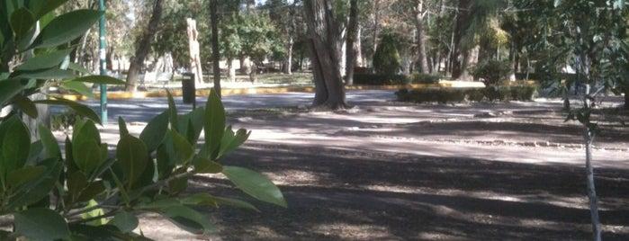 Parque Morales (Juan H. Sánchez) is one of SLP.