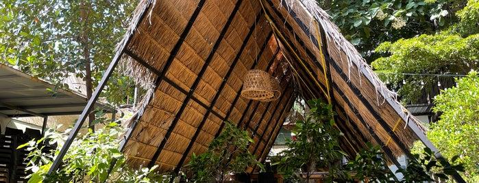 "Han ""Thueng"" Chiang Mai is one of Tempat yang Disimpan Huang."