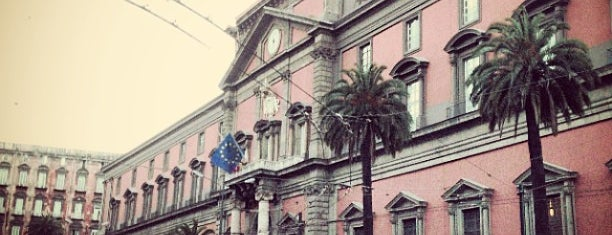 Museo Archeologico Nazionale is one of Napoli city guide.