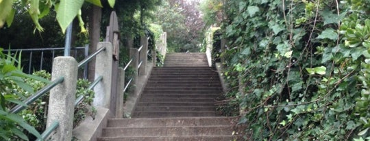 Coit Steps is one of Orte, die Jesus gefallen.