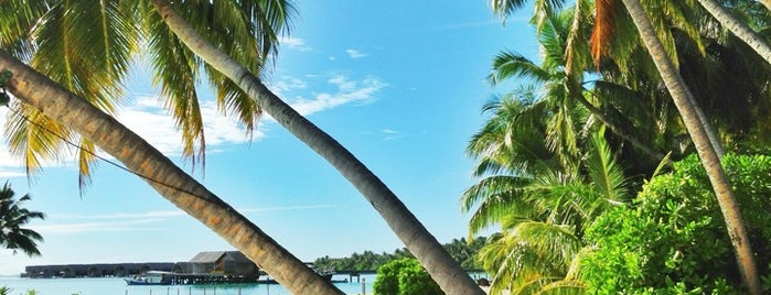 Shangri La's Villingili Resort And Spa Addu Atoll is one of WORLDS BEST HOTELS..