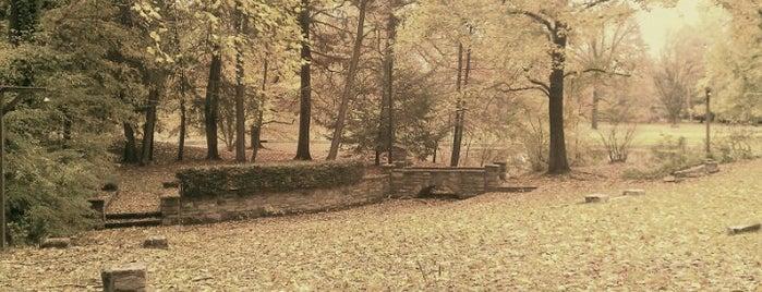 Pastorius Park is one of Orte, die Irina gefallen.