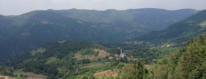 Serindere Köyü is one of Sapanca.