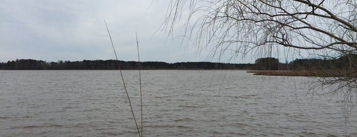 Old Beech Nature Trail is one of Olesya: сохраненные места.