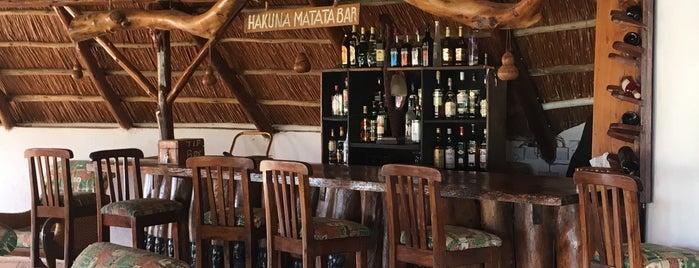 Hakuna Matata Bar is one of Peter'in Beğendiği Mekanlar.