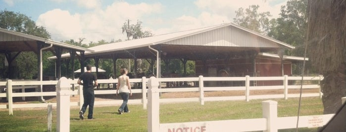 Horse World Riding Stables is one of Favorite Entertainment Spots.