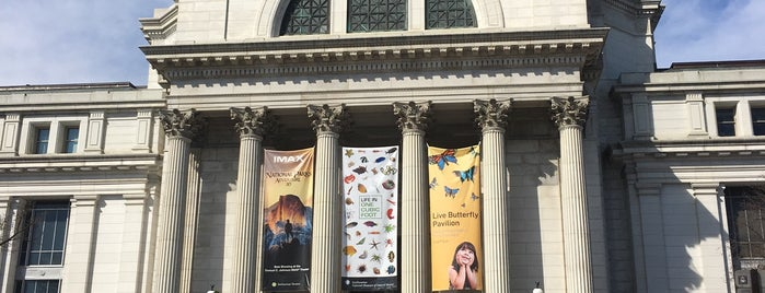 Museo Nacional de Historia Natural del Instituto Smithsoniano is one of Washington, DC Wish List.