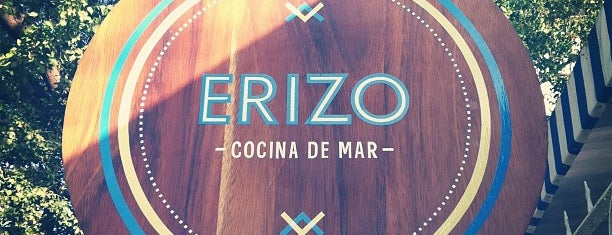 Erizo - Cocina de Mar is one of Mariscos.