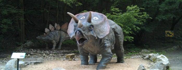 Dino Park is one of Locais curtidos por Lucky Devil.
