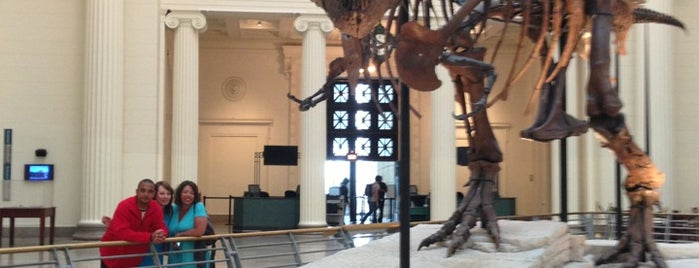 Museo Field de Historia Natural is one of Chicago, IL.