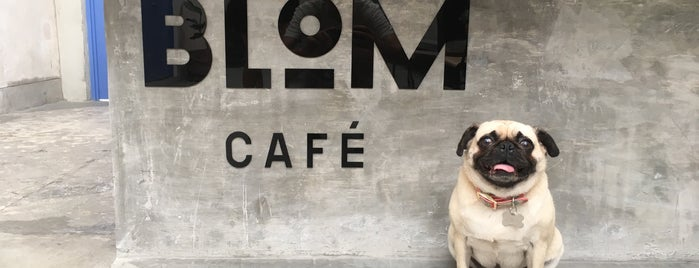BLOM Café is one of DF.