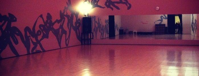 Dance Options is one of Locais curtidos por Tatsiana.