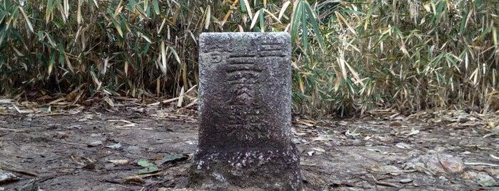 Mt. Miminashi is one of 山行記録.