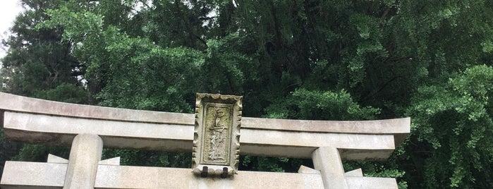 白鳥神社 is one of 大和の風物詩 11月.
