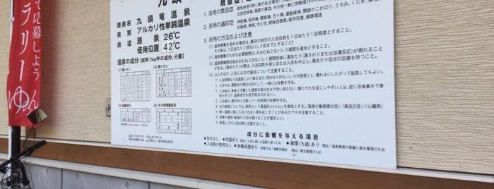九頭竜温泉 平成の湯 is one of 訪れた温泉施設.