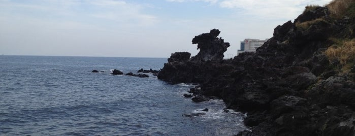 Dragon Head Rock (Yongduam) is one of 제주.