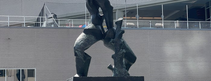 De Verwoeste Stad (Zadkine) is one of Nizozemí.