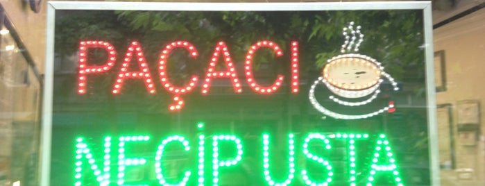 Paçacı Necip Usta is one of تركيا.