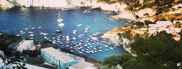 Piscine Naturali is one of capri.