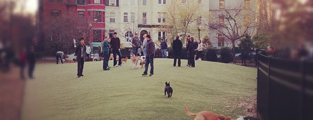 S Street Dog Park is one of Locais curtidos por Danyel.
