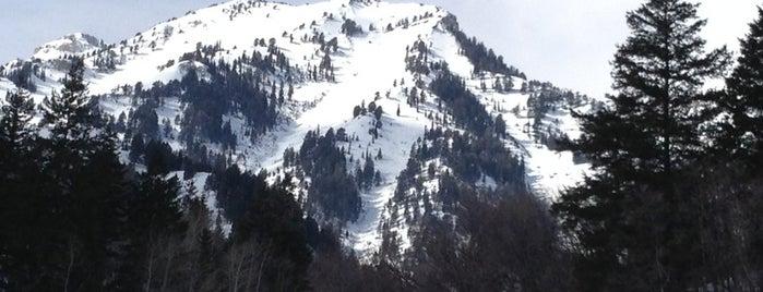 Sundance Resort is one of ski bumming.