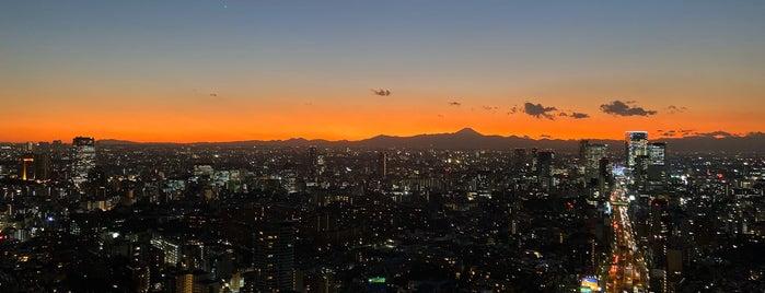 Roppongi Hills Mori Tower is one of JPN.