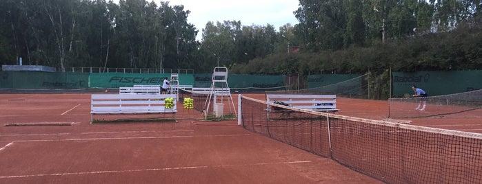 Центральные Теннисные Корты is one of Anton: сохраненные места.