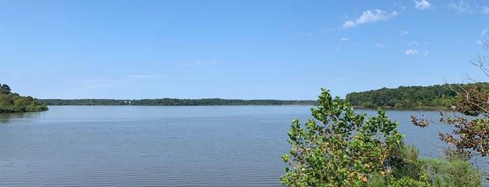 Lake Crabtree Greenway Gazebo is one of Posti che sono piaciuti a Ethan.