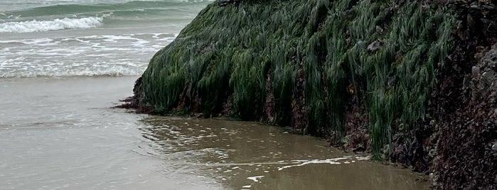 Oceanside Beach is one of Oregon Coast.