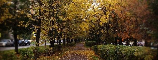 Чонгарский бульвар is one of Locais curtidos por Ivan.