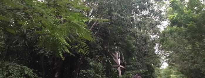 Sacbe Mayan Santuary is one of Gespeicherte Orte von Yoshua.