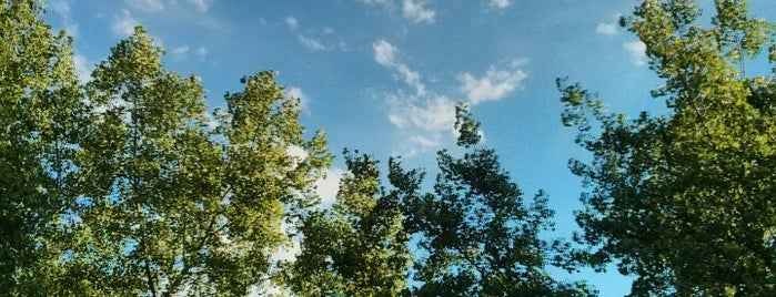 LazzLand is one of Lugares guardados de Melissa.