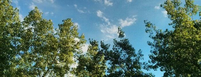 LazzLand is one of Posti salvati di Melissa.