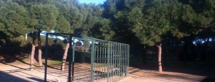 Parc del Poblenou is one of Nens - Niños.