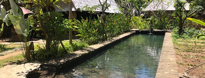 Green Village is one of ubud.