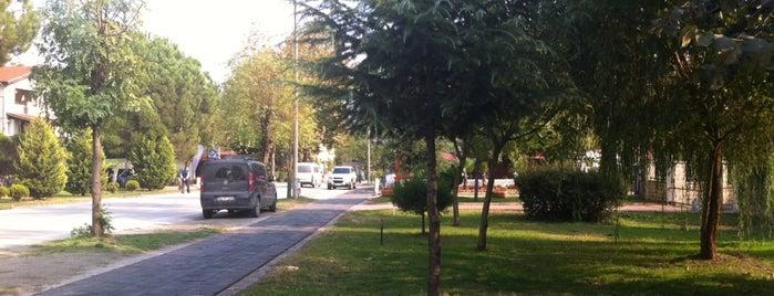 Kırkpınar Yürüyüş Yolu is one of Maşukiye.