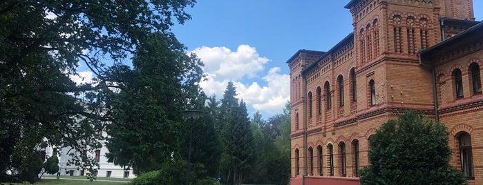 Schloss Schwante is one of Brandenburg Blog.