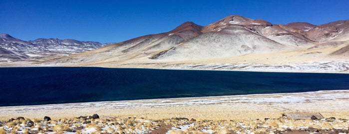 Lagunas Altiplanicas is one of Orte, die Sandra gefallen.