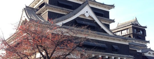 Kumamoto Castle is one of 西郷どんゆかりのスポット.