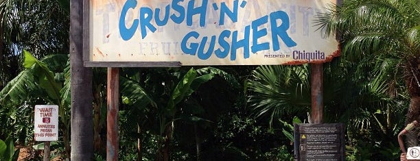 Crush 'n' Gusher is one of Florida places.
