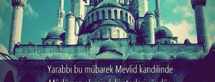 Dündar Bey Çarşısı ve Medresesi is one of ✖ Türkiye - Isparta.