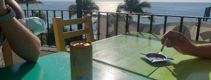 Cheeky Monkey is one of Puerto Vallarta.