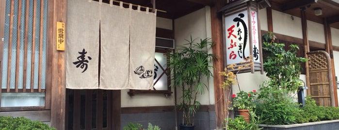 キッチン寿 is one of FAVORITE PLACE.