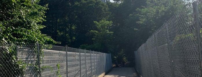 George Washington Bridge Pedestrian & Bike Path is one of Joisee (New Jersey) / NYC Suburbs.