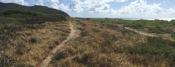 Ka'Iwi Scenic Shoreline is one of 🏝Oahu 🌋🏖☀️🕶.