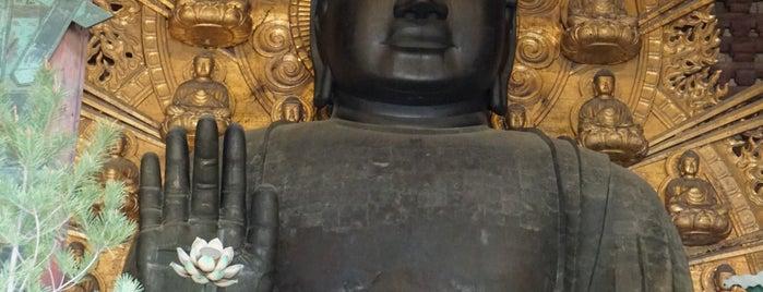 Vairocana Buddha (Nara no Daibutsu) is one of Posti che sono piaciuti a Thiago.