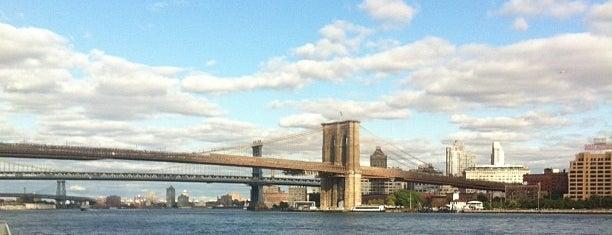 Brooklyn Piggies is one of New York 2016.